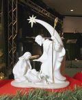 Nativitypicfromsentinel